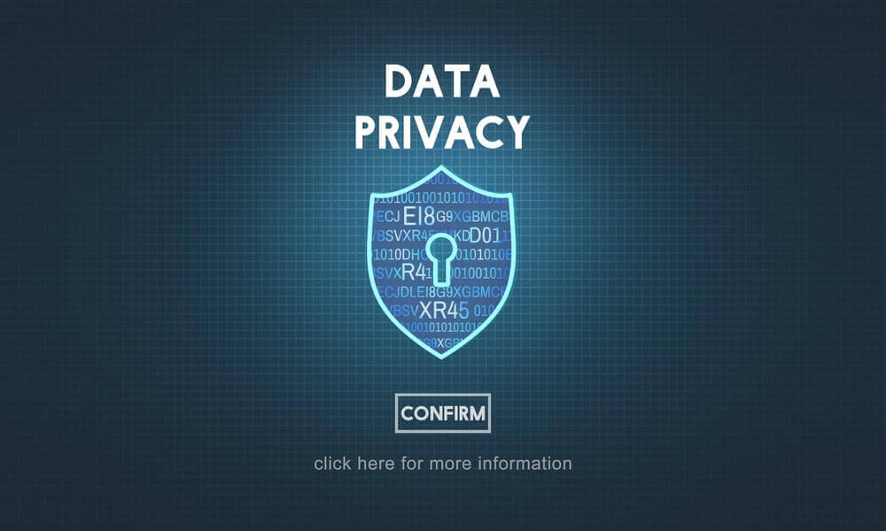 Data Privacy shield more information